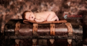 Babies-and-Pets-024